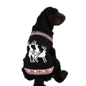 Dog Christmas Sweater: Unspeakable Reindeer Games